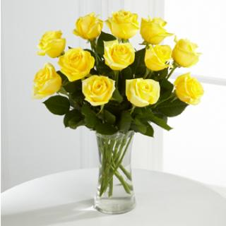 A Perfect Yellow Dozen Roses