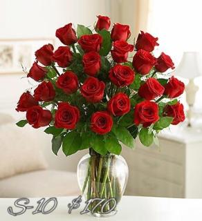 AMAZING 2 DOZEN RED ROSES
